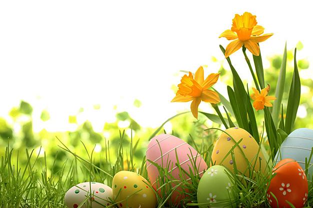 Les vacances de printemps à l'ENSAS